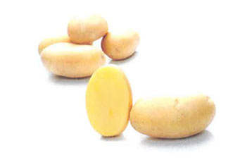 Edison potato