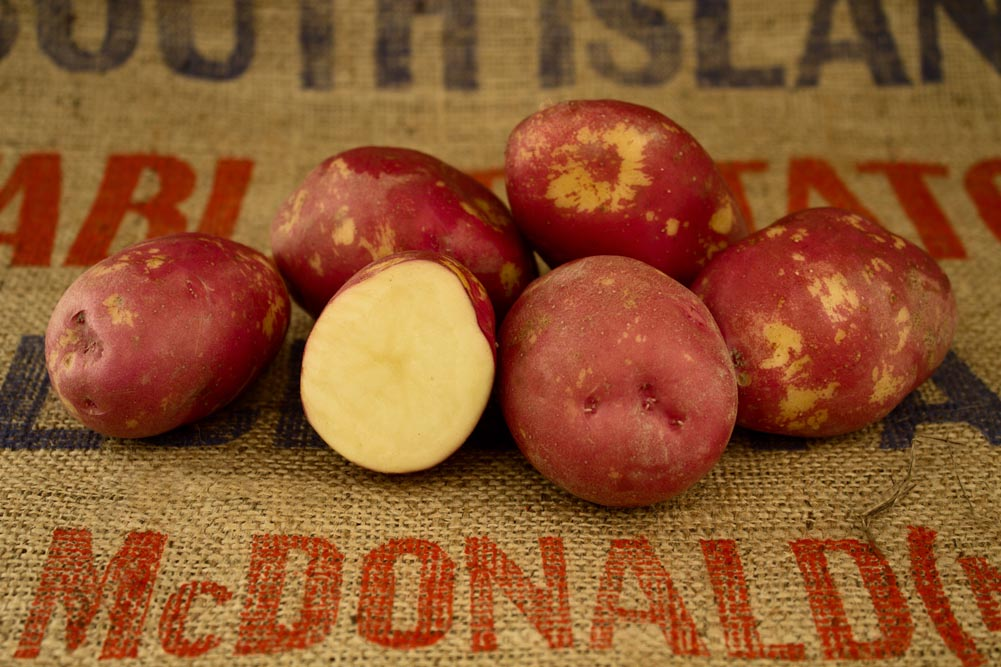 Red King Edward potato variety
