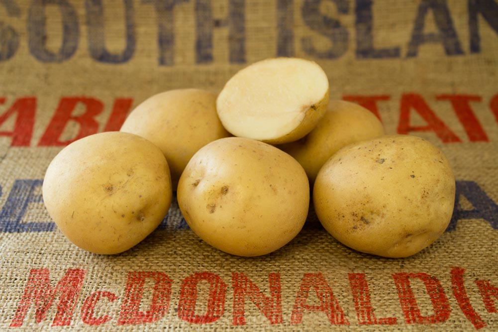 Rocket potato variety
