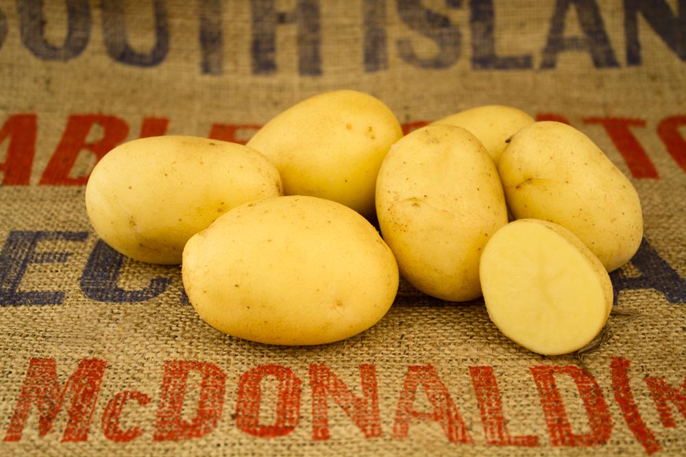 Tiffany potato variety